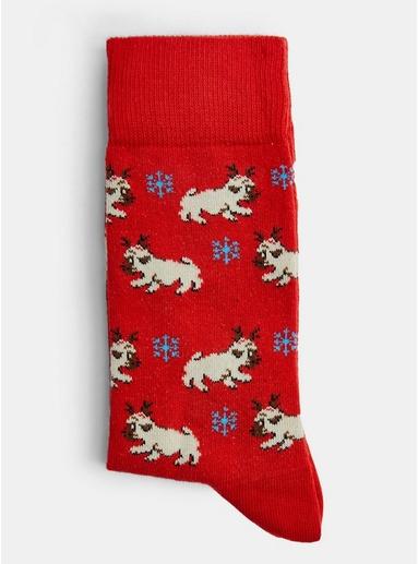 Socken mit Beagle-Print, rot, ROT